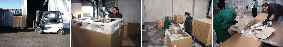 Labrador Cargo - Trofætransport